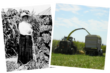 A woman farming in the early 1900s and modern farming equipment.
